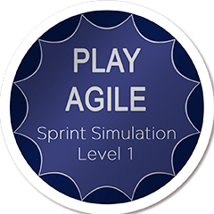 Play Agile Coach Zertifizierung Team